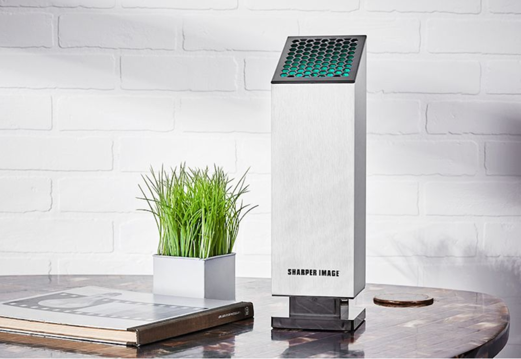 air purifier with plant
